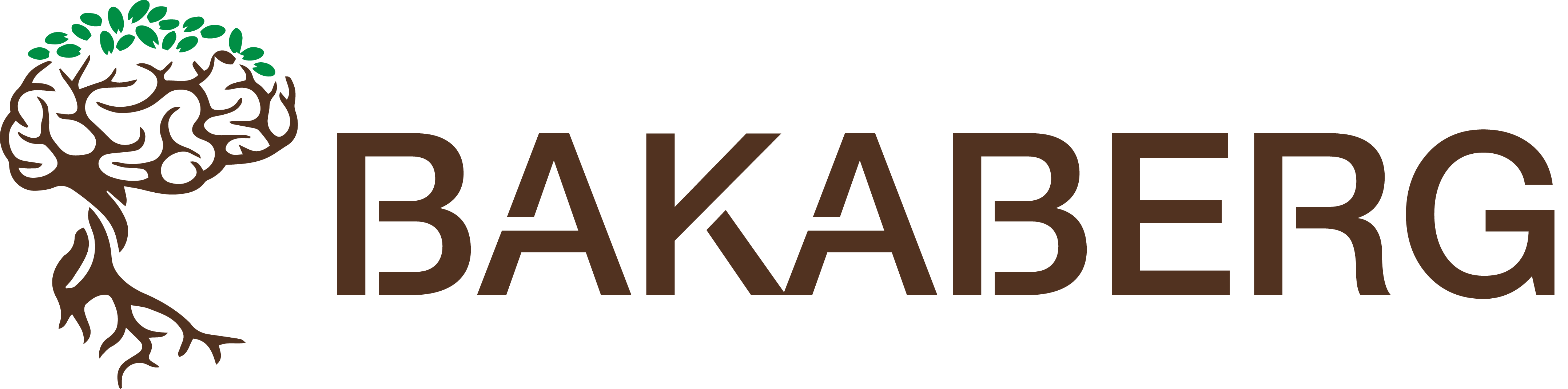 Bakaberg